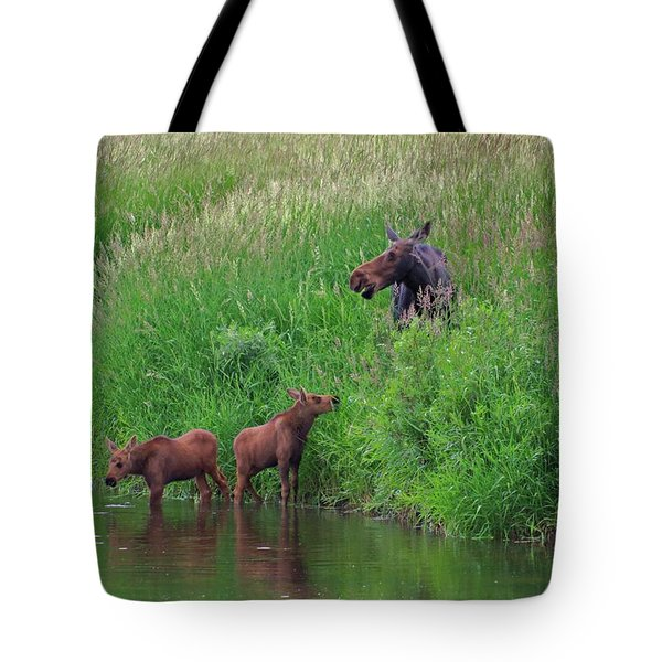 Moose Play Tote Bag