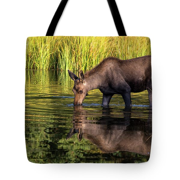 Tote Bag featuring the photograph Moose Reflections by Mary Hone