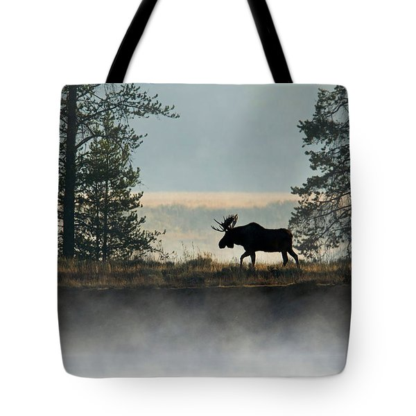 Moose Surprise Tote Bag