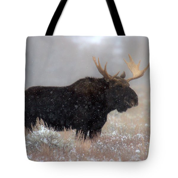 Tote Bag featuring the photograph Moose Winter Silhouette by Adam Jewell