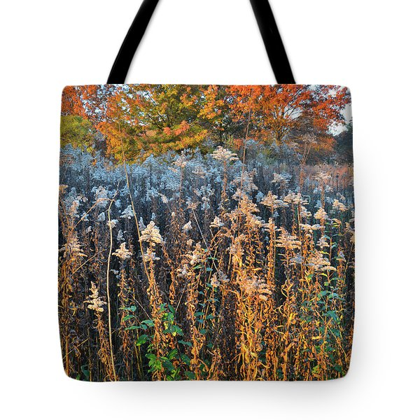 Tote Bag featuring the photograph Moraine Hills Fall Colors by Ray Mathis