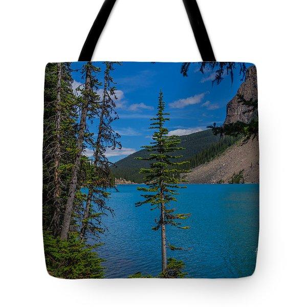 Moraine Lake Trail Tote Bag