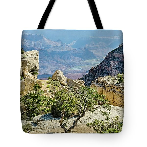 Moran Point View Tote Bag