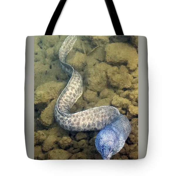Tote Bag featuring the photograph Moray Eel by Karen Nicholson