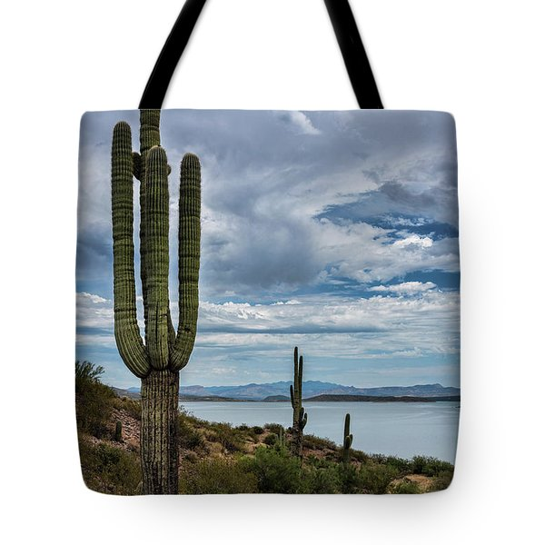 Tote Bag featuring the photograph More Beauty Of The Southwest  by Saija Lehtonen