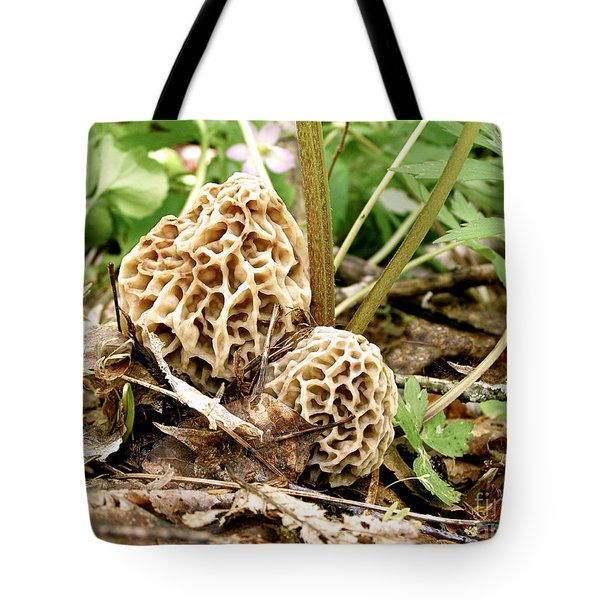 Morel Mushrooms Tote Bag by Angie Rea
