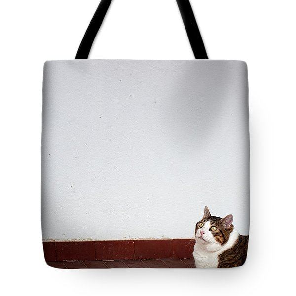 Tote Bag featuring the photograph Morfeas by Laura Melis