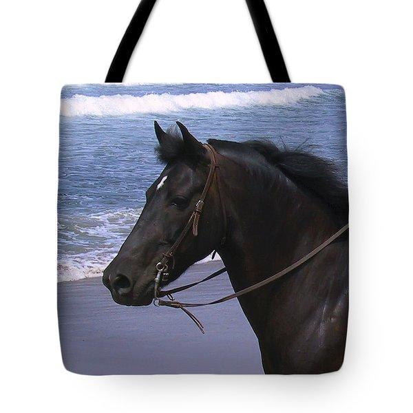 Morgan Head Horse On Beach Tote Bag