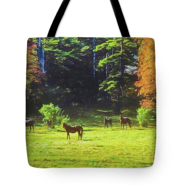 Morgan Horses In Autumn Pasture Tote Bag