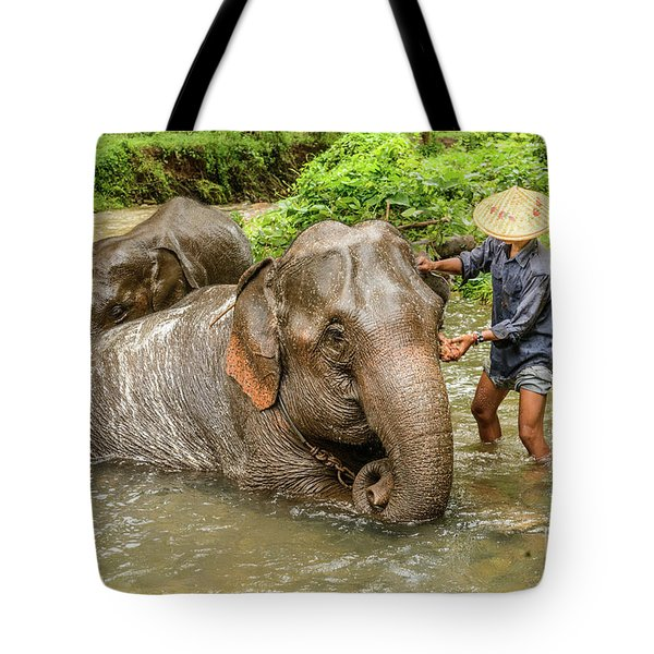 Morning Ablutions 4 Tote Bag by Werner Padarin