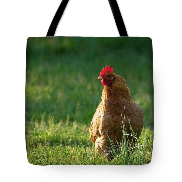 Morning Chicken Tote Bag