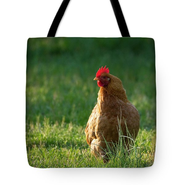 Morning Chicken Tote Bag