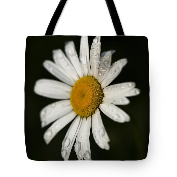 Morning Daisy Tote Bag