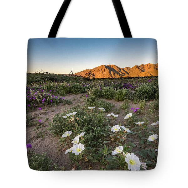 Morning Desert Evening Primrose Tote Bag by Scott Cunningham