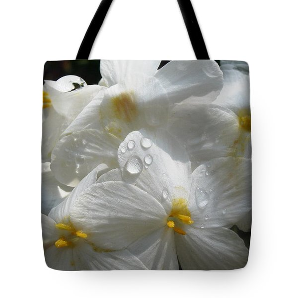Morning Dew Tote Bag by Martha Ayotte