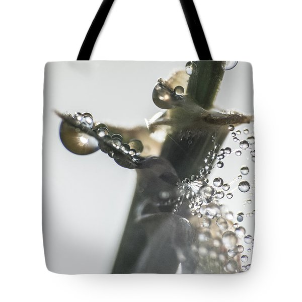 Morning Dew On A Web Tote Bag