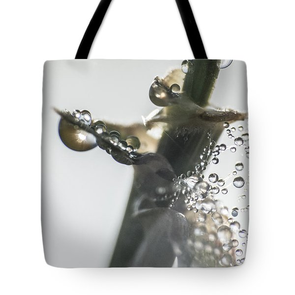 Morning Dew On A Web Tote Bag by Odon Czintos