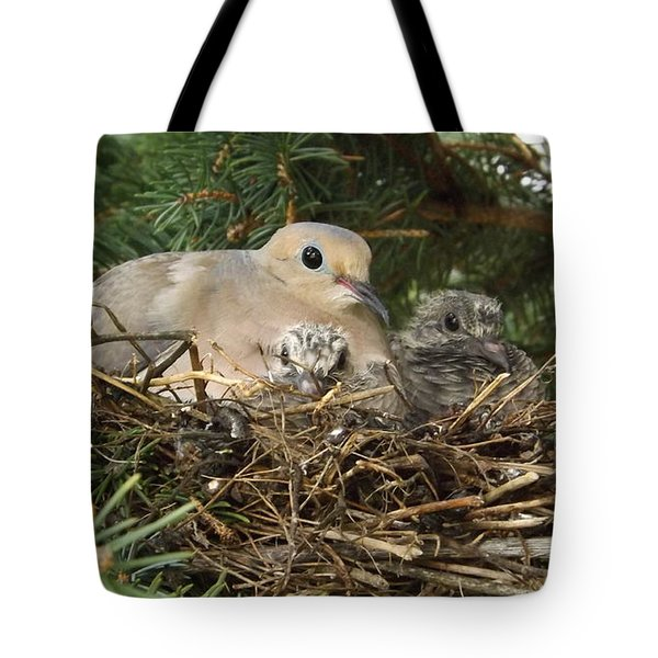 Morning Dove And Two Babys #2 Tote Bag