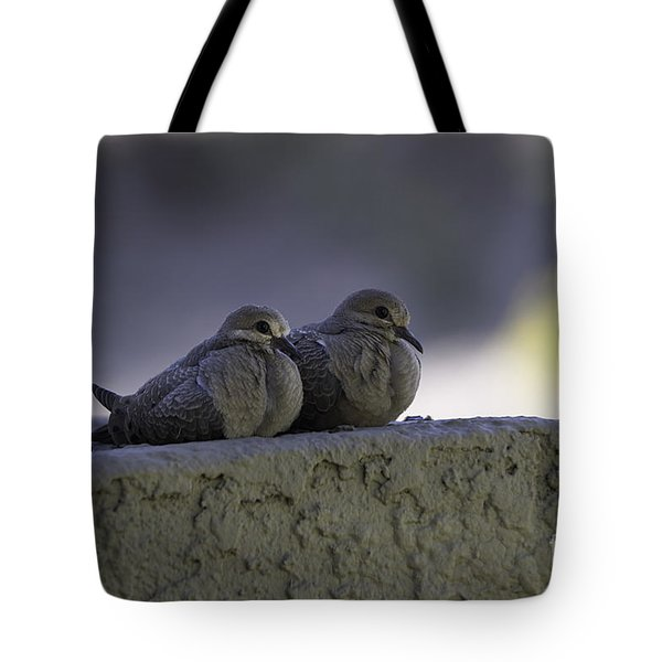 Morning Doves Tote Bag by Anne Rodkin