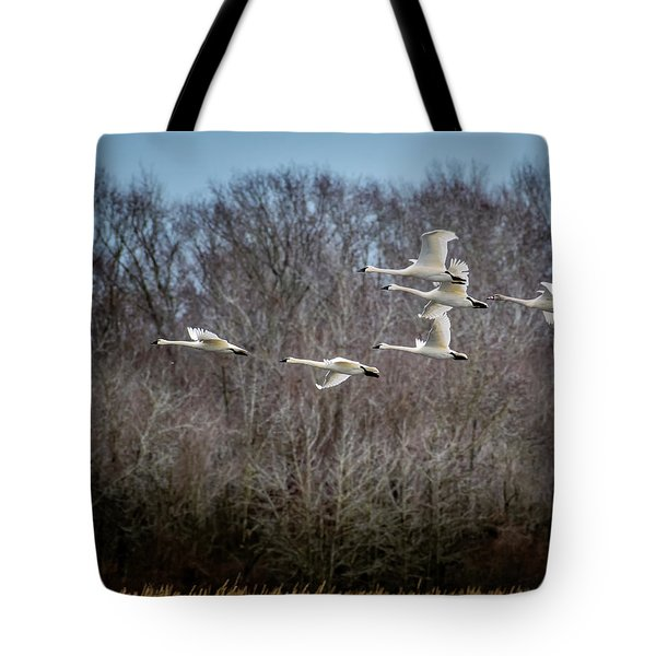 Morning Flight Of Tundra Swan Tote Bag