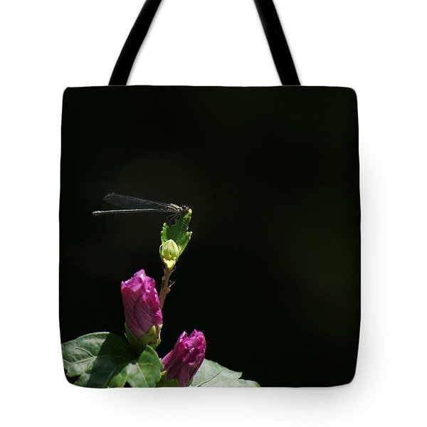 Morning Garden Damselfly With Rose Of Sharon Tote Bag