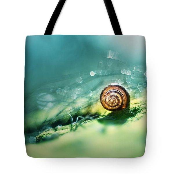 Tote Bag featuring the photograph Morning Glare by Jaroslaw Blaminsky