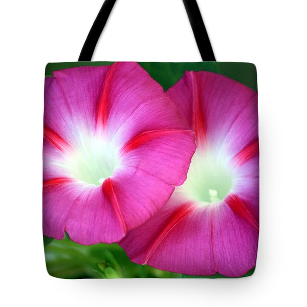 Tote Bag featuring the photograph Morning Glories by Sheila Brown