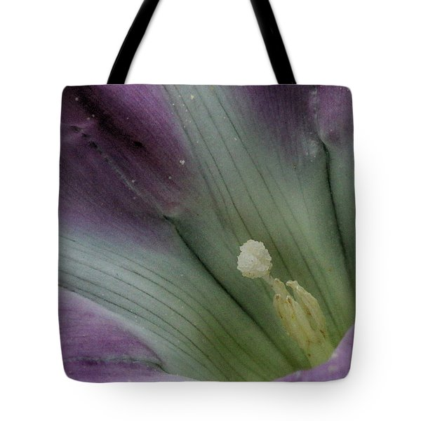 Tote Bag featuring the photograph Morning Glory Center by William Selander