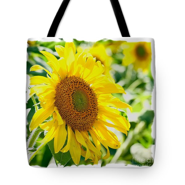 Tote Bag featuring the photograph Morning Glory Farm Sun Flower by Vinnie Oakes