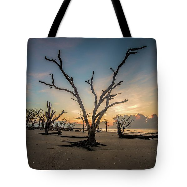 Morning Glory Tote Bag by Robert Loe