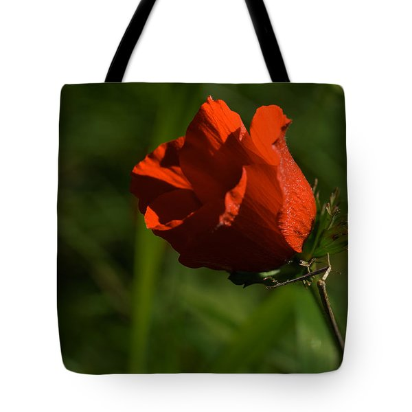 Morning Glory Tote Bag by Uri Baruch