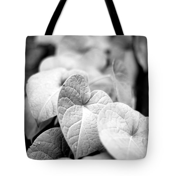 Tote Bag featuring the photograph Morning Glory Vines by Todd Blanchard