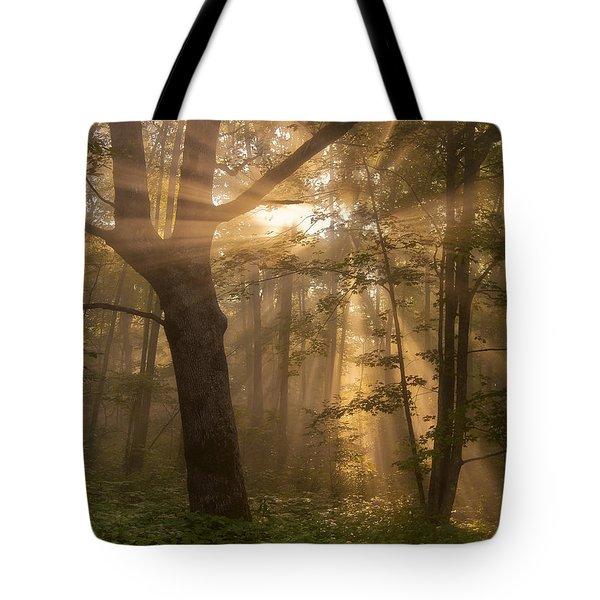 Morning God Rays Tote Bag