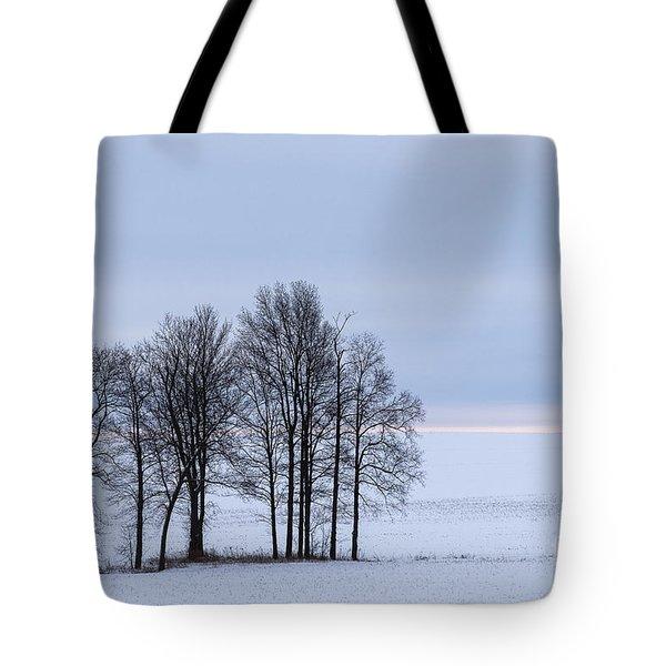 Morning Grace Tote Bag