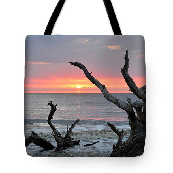 Morning Greeting Tote Bag by Bruce Gourley
