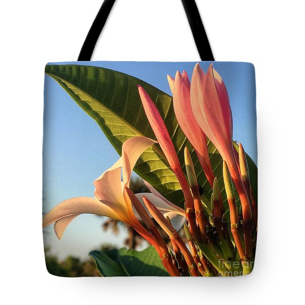 Tote Bag featuring the photograph Morning Heaven by LeeAnn Kendall