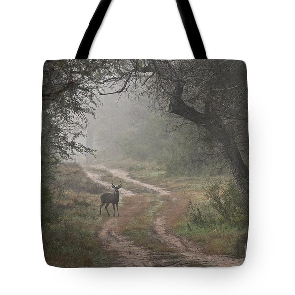 Morning Highlight  Tote Bag