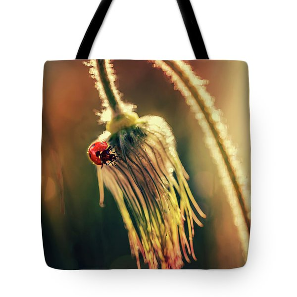 Tote Bag featuring the photograph Morning Impresion With Ladybug by Jaroslaw Blaminsky