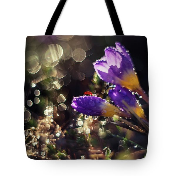 Tote Bag featuring the photograph Morning Impression With Violet Crocuses by Jaroslaw Blaminsky