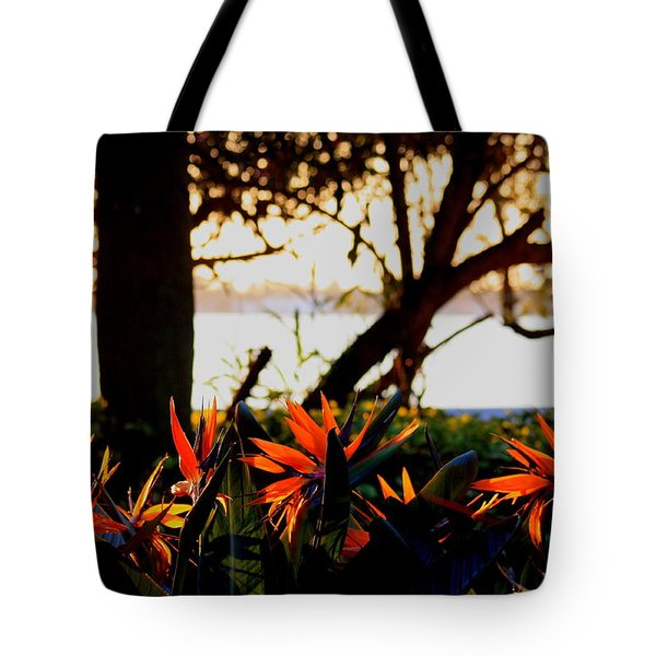 Tote Bag featuring the photograph Morning In Florida by Diane Merkle