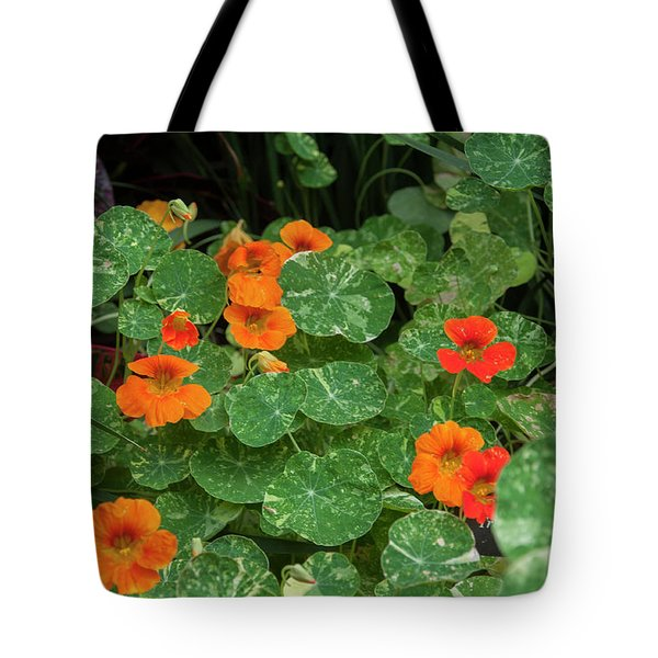 Morning In Longwood Gardens Tote Bag
