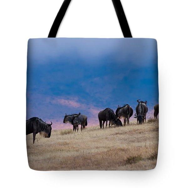 Morning In Ngorongoro Crater Tote Bag by Adam Romanowicz