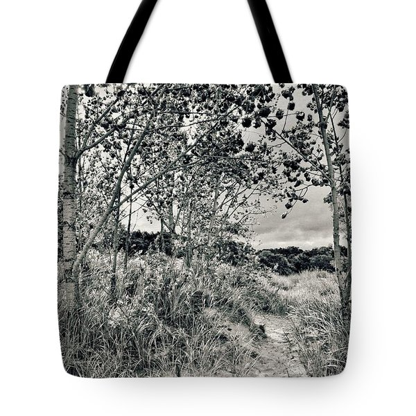 Tote Bag featuring the photograph Morning In The Dunes by Michelle Calkins