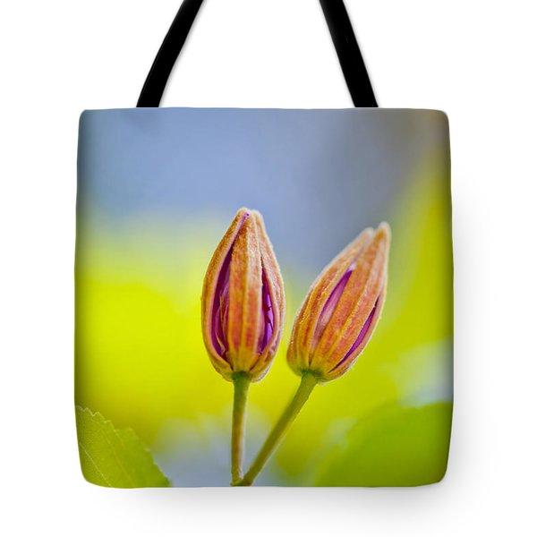 Morning Joy Tote Bag