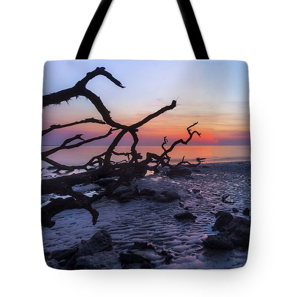 Morning Light Tote Bag by Alan Raasch