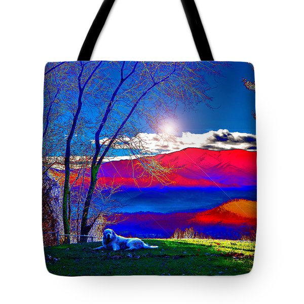 Morning Light At Donna's House Tote Bag