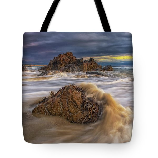 Morning Light At Marginal Way Tote Bag
