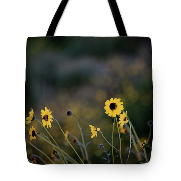 Tote Bag featuring the photograph Morning Light by Kelly Wade