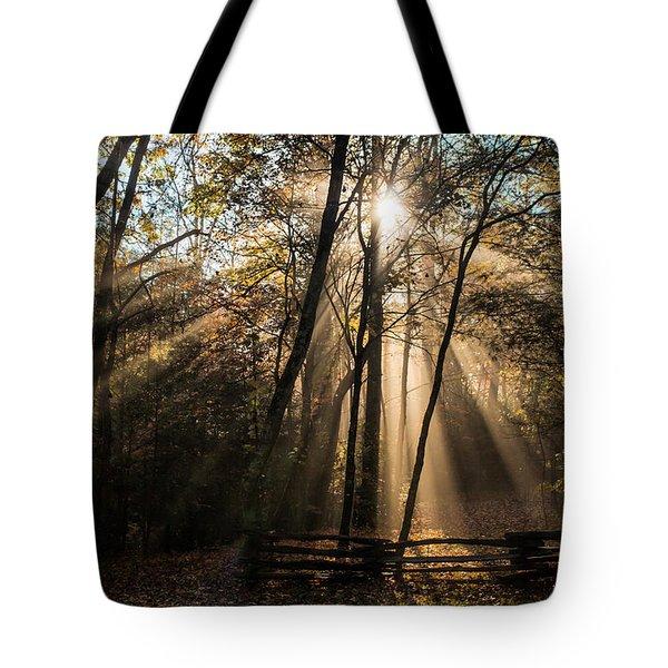 Morning Light Tote Bag by Lynne Jenkins