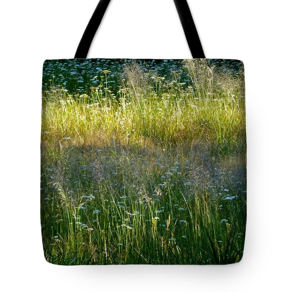 Morning Light On Grant Meadow Tote Bag by Amelia Racca